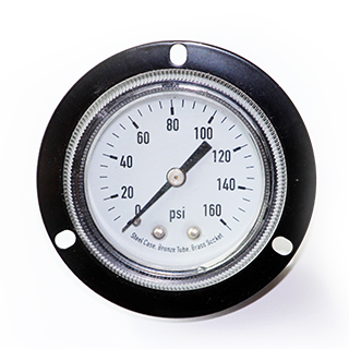 Dry pressure gauge with panel mount